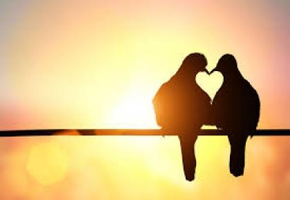 Ebós para o amor